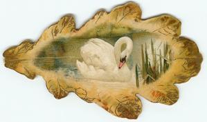 oak leaf with swan inset