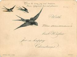 three black and white birds fly to centre of card from upper left corner