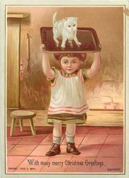 child holding kitten on tray above head