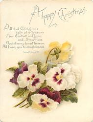 two white and purple pansies centre, one backwards behind, purple and white pansy below