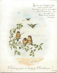 three birds on a limb and three in distance flying