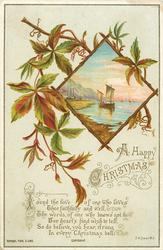 diamond shaped inset view of sail boat at shore, sprig of leaves
