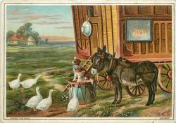 five geese in front of small dog on drum, donkey to right and caravan behind       title unclear