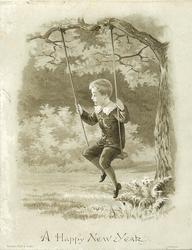 boy in  tree swing