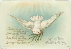 dove flying forward with sprig of greenery in its mouth