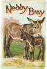 NEDDY BRAY