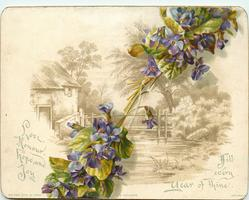 two bunches of violets over sepia river and bridge scene