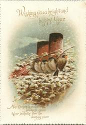 four birds perched by chimney, three face forward, one to back