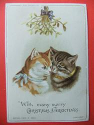 ginger and white cat with blue ribbon beside brown striped cat with gold ribbon, both under mistletoe