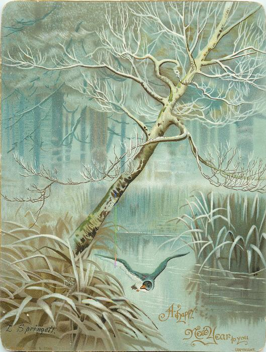 duck flies over pond, wintery snow scene with large leaning tree and pond