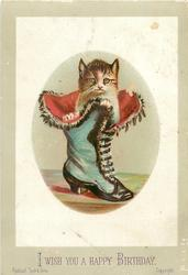 cat in tall blue boot with snaps