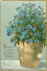 blue flowers in brown pot