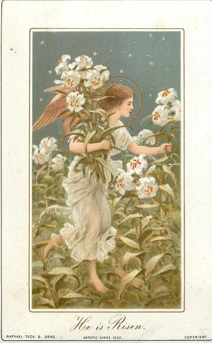 angel walks and picks white lilies