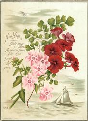 red and pink flowers over sepia vignette of sailboat in full sail