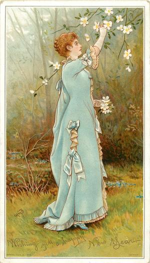 lady in blue dress reaches up to pick blossoms