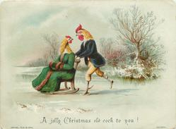 rooster pushing hen on wooden chair on ice