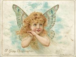 cherub with hands together to left of chin