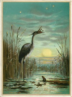 heron standing in pond catching frogs, reeds behind him