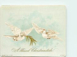two white doves flying, one has palm fronds in mouth