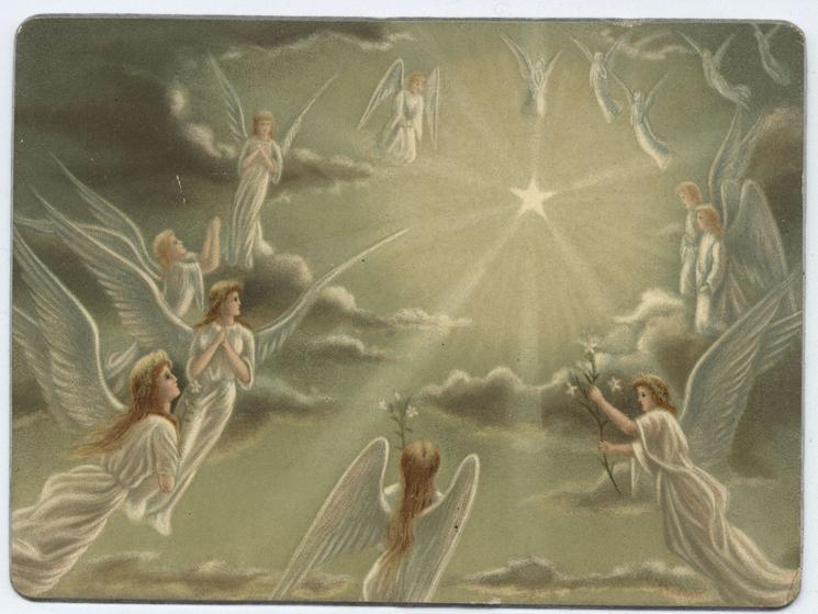 angels in flight surround star