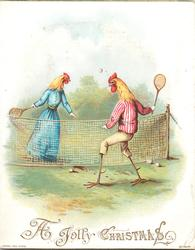 chickens playing tennis