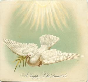 white dove flying with fronds in beak