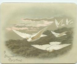 five doves flying towards left of card