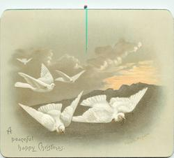 five doves flying toward right of card