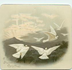 six doves flying toward upper right