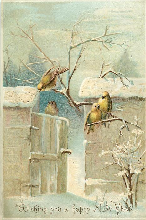 four yellow birds at snowy gate and wall