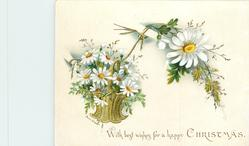 daisies in basket with single daisy flower in bouquet above