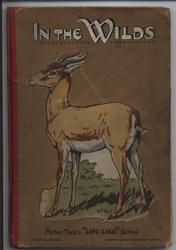 IN THE WILDS antelope