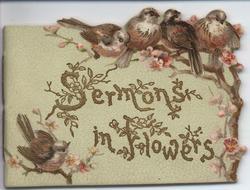 SERMONS IN FLOWERS