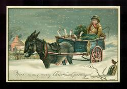 boy in donkey cart with six geese and a wreath