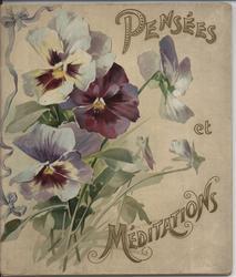 PENSE'ES & MEDITATIONS