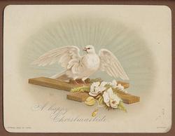 dove on cross