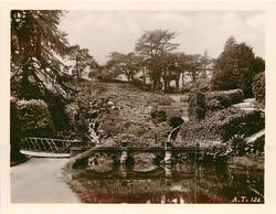 bridge and walkway in garden