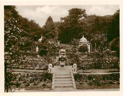 stairway up to garden