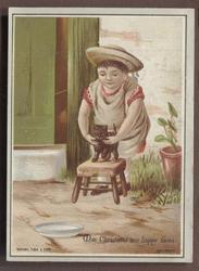 child holding kitten on small stool