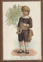 boy in brown suit with mistletoe