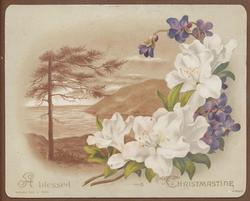 flowers and sea scene