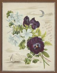 purple and white flowers on stems, vignette of boat under sail