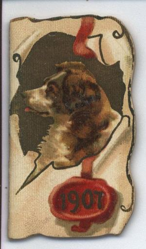 1907 brown and white dog