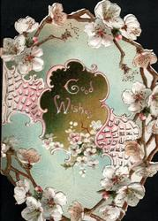 GOOD WISHES on brown inset & perforated design surrounded by sprays of white blossom