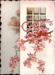 GREETINGS(G illuminated) in pink across perforated window with pink cherry blossom below
