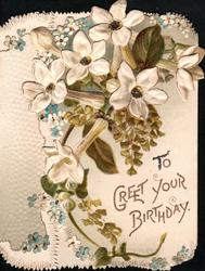 TO GREET YOUR BIRTHDAY white clematis, white & blue forget-me-nots & ginkgo leaves above