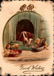 GOOD WISHES in gilt lower front, dog snoozes in kennel, chicks eat from bowls