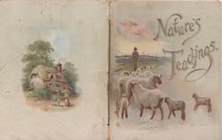 NATURES TEACHINGS, sheep & shepherd, windmill, flowers