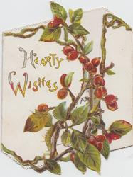 HEARTY WISHES left, berried hawthorne right & on narrow right flap