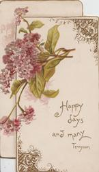 HAPPY DAYS AND MANY under purple lilac, 2 designed gilt corners, embossed